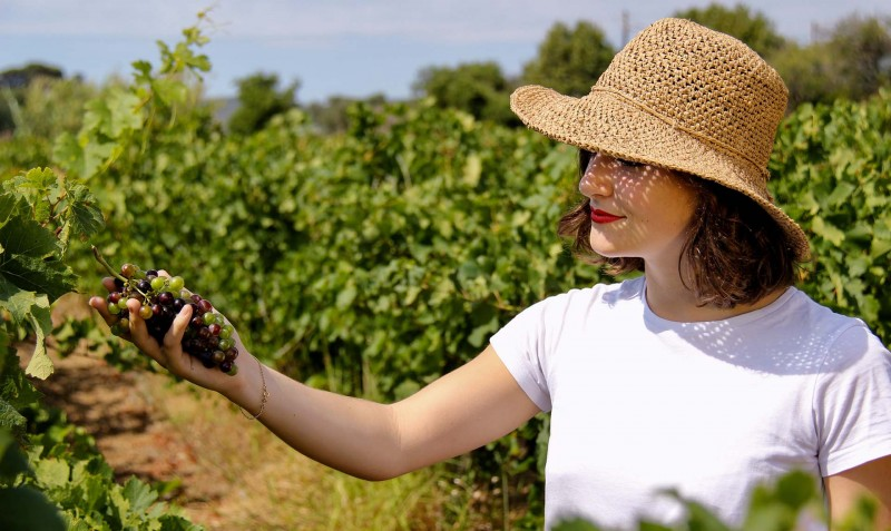 Vins, muscats et vermouth