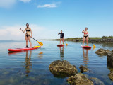site web paddle 2