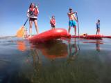 paddle decouverte enfants