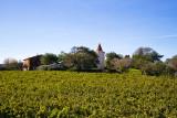 Chateau-la-peyrade-et-vignes