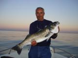 Pêche Méditerrannée
