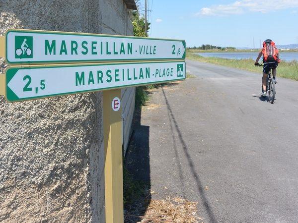 LIAISON - MARSEILLAN VILLE