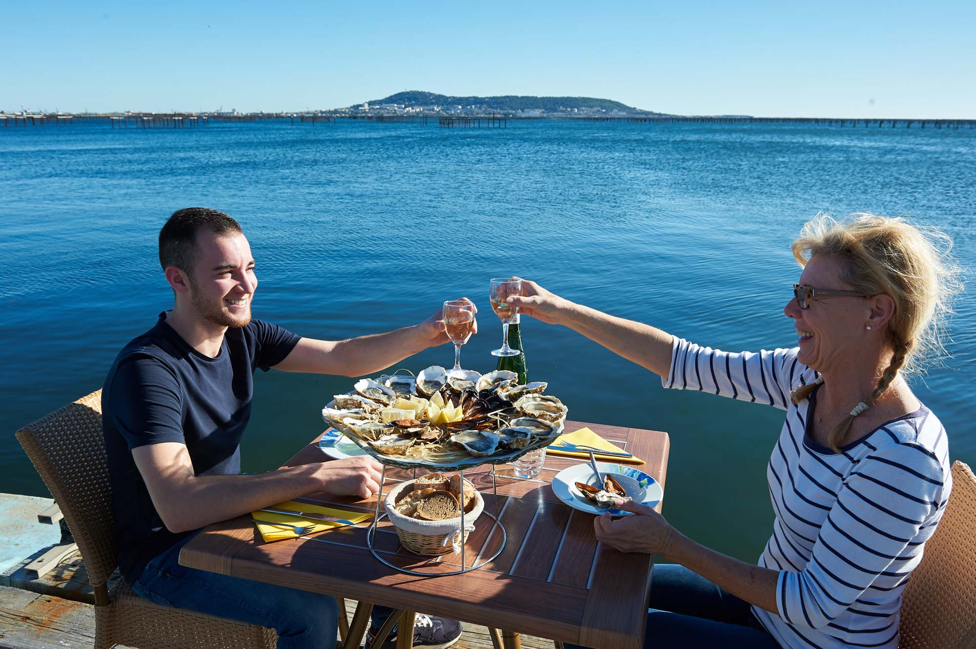 Degustation huîtres et vin