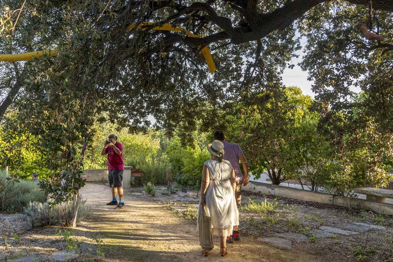 jardin-antique-mediterranéen-sete-archipel-de-thau - © DEGAS