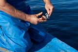 Conchyliculteur de la lagune de Thau