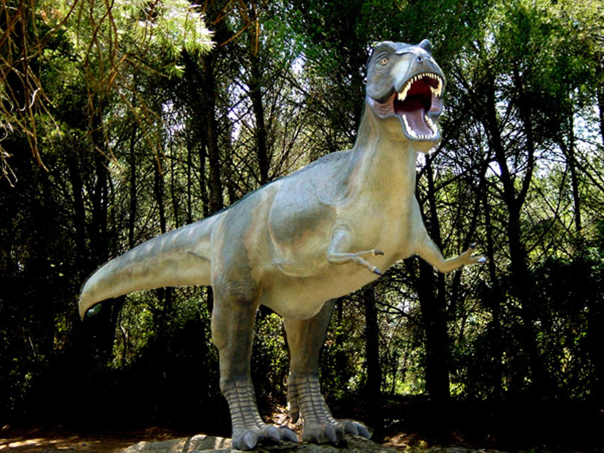 - © Musée parc des dinosaures