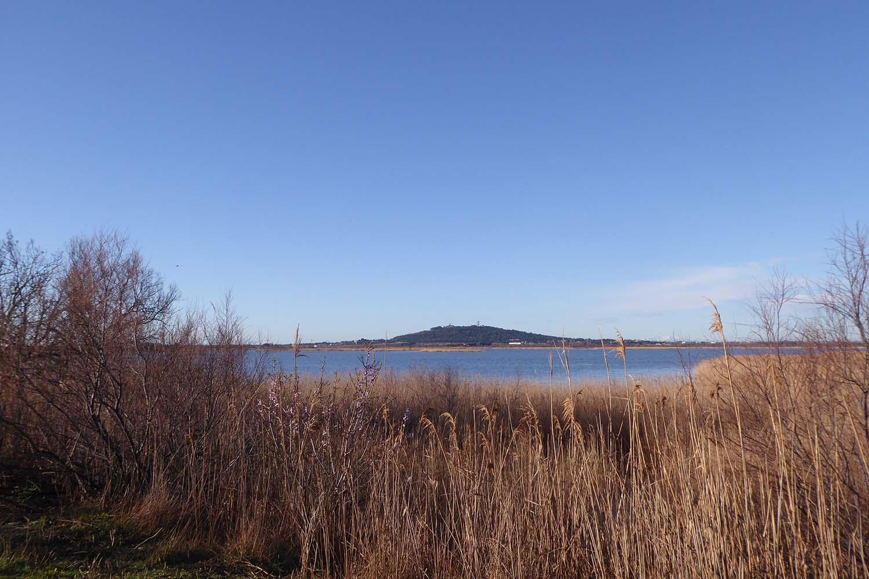 Pause nature à la réserve du Bagnas