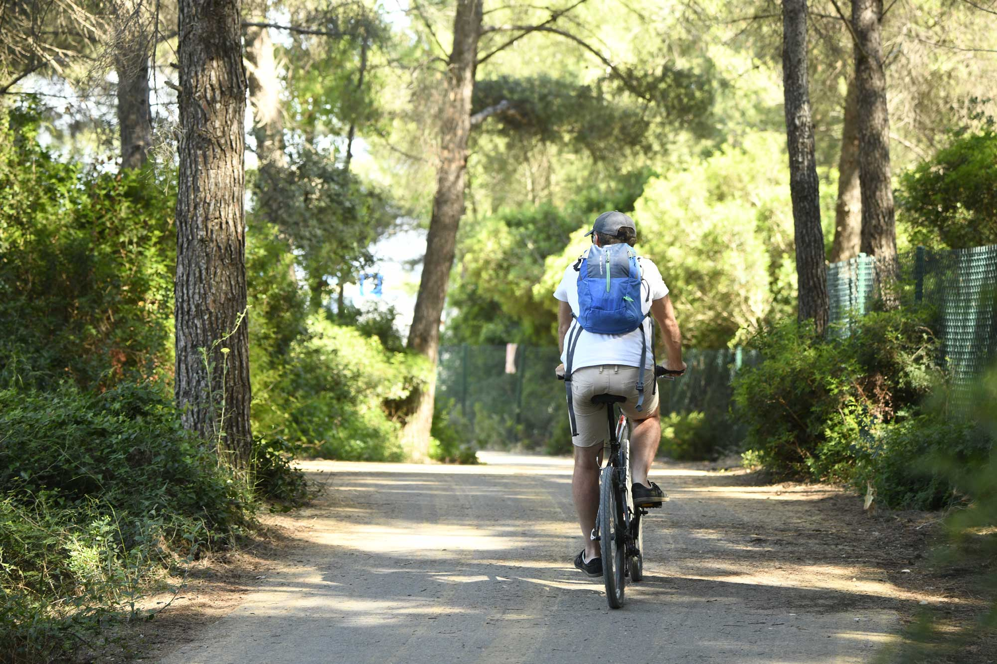 Vélo dans le bois des Aresquiers 2